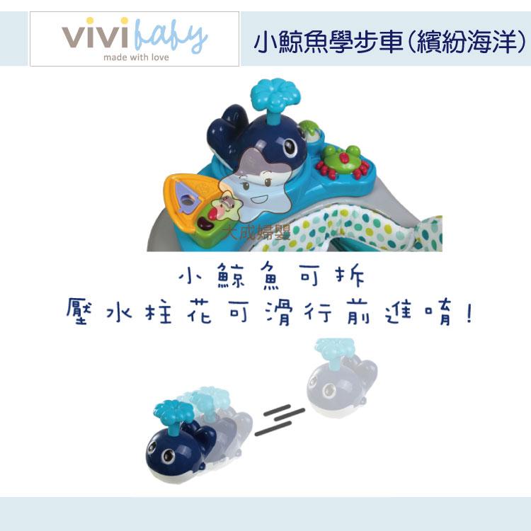 【大成婦嬰】vivi baby 小鯨魚學步車17373 (繽紛海洋) 6個月以上適用 2