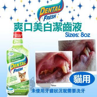 《DENTAL FRESH》爽口美白潔齒液(綠)【貓咪專用漱口水】8oz