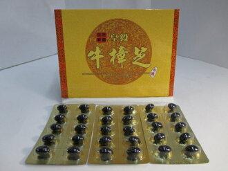 皇毅牛樟芝軟膠囊(10顆裝)
