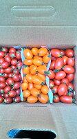 櫻桃小丸子週邊商品推薦有機無毒蔬果~小番茄~綜合三種都有唷~5斤裝$450