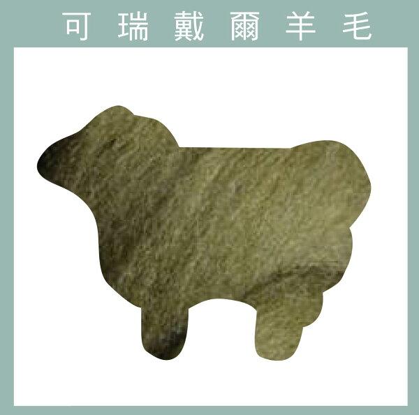 紐西蘭ASHFORD-可瑞戴爾羊毛[10克]C51綠褐色