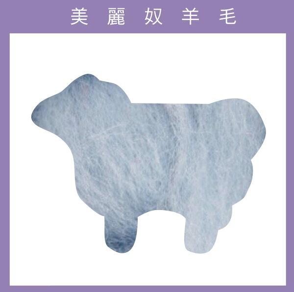 紐西蘭ASHFORD-美麗奴羊毛 M20雪花冰