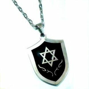大衛星六芒星 騎士盾牌鈦鋼項鍊
