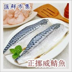 【海鮮嚴選】挪威薄鹽鯖魚片-235g/2片裝(235g±10%,每片約120g)