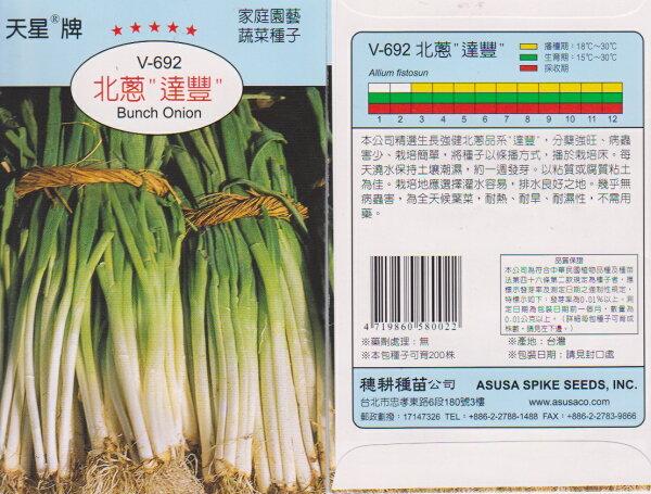 【尋花趣】天星牌 北蔥  蔬菜種子 每包約380粒 保證新鮮種子