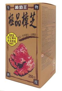 葡萄王極品樟芝 250粒/盒◆德瑞健康家◆【DR352】