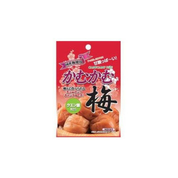 太陽牌口袋軟糖-梅子 30g