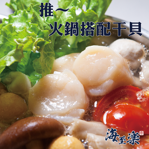 【海至樂】《免運》★ 2L特大尺寸★ 北海道生食級干貝-1公斤