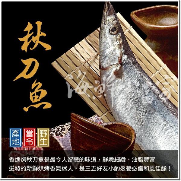 肥美特大秋刀魚 知名日本料理餐廳指定用料 火烤香氣迷人!! 每尾190克/3尾裝!!