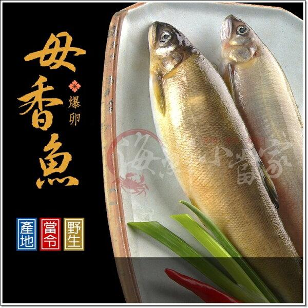 【爆卵】母香魚 8尾盒裝 每尾115克 宜蘭無污染水域養殖 大規格SIZE