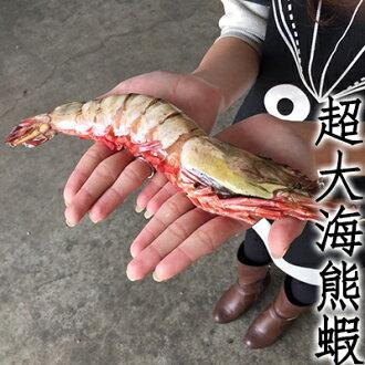 ㊣盅龐水產 ◇海熊蝦◇120-160g/尾 $225/尾 熊蝦 草蝦 很粗 很大 歡迎餐廳 批發