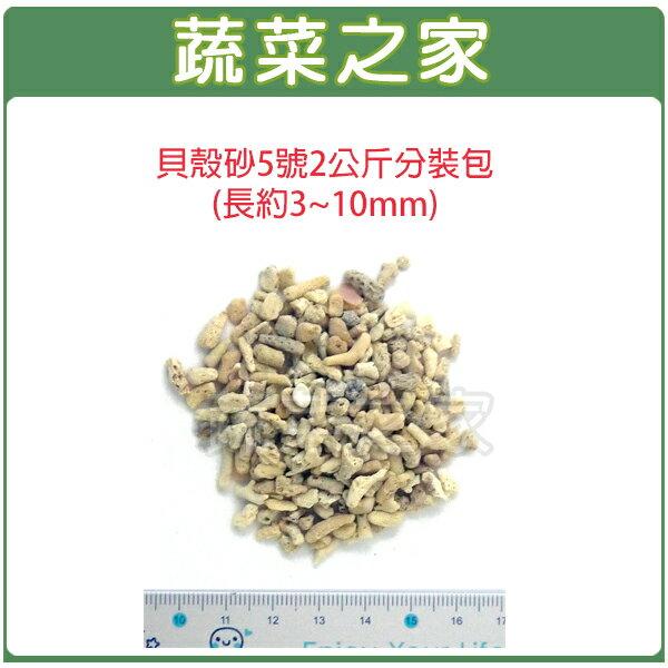 【蔬菜之家001-AA24】貝殼砂5號2公斤分裝包(長約3~10mm珊瑚石.米貝石.貝殼石)