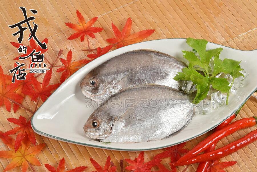 ~現撈肉鯽魚 ~600g 包~ 海域捕撈,新鮮直送,肉多刺少,野生最鮮甜~戎的魚店~