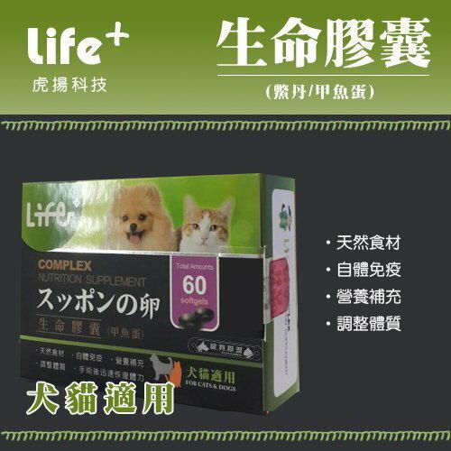 +貓狗樂園+ 虎揚科技【Life生命膠囊。鱉丹。動物性卵磷脂、爆毛丹。60顆】850元 0