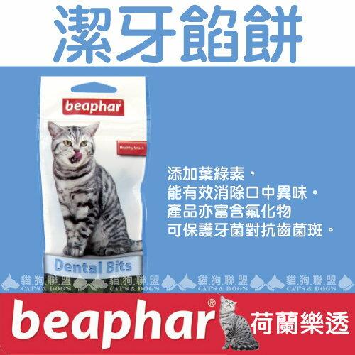 +貓狗樂園+ 荷蘭beaphar【樂透愛貓。潔牙餡餅。大。150g】270元 - 限時優惠好康折扣