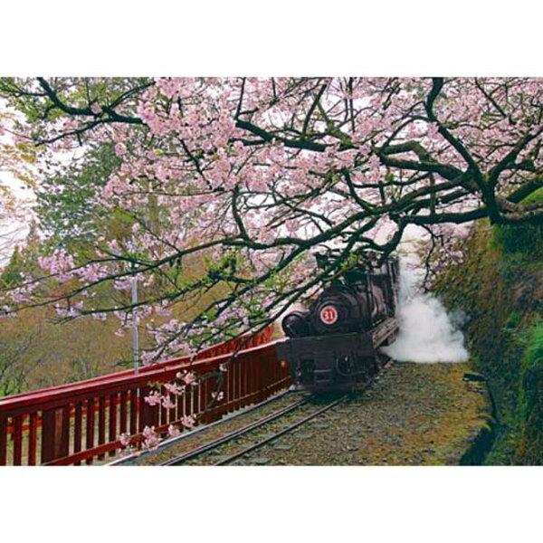 520片夜光拼圖 台灣之美:夜光 嘉義 阿里山蒸汽火車