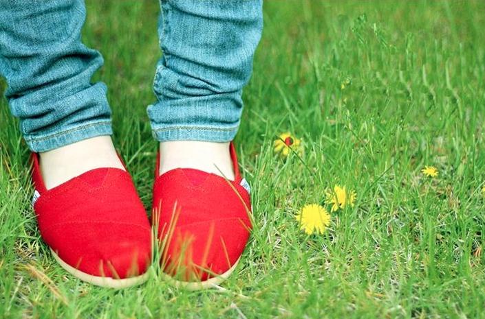 【TOMS】紅色素面基本款休閒鞋  Red Canvas Women's Classics 6