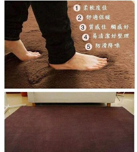 四條  40^~60 CM 纖細防滑柔軟舒適短絨毛地毯 浴室墊 玄關墊 地墊 門墊