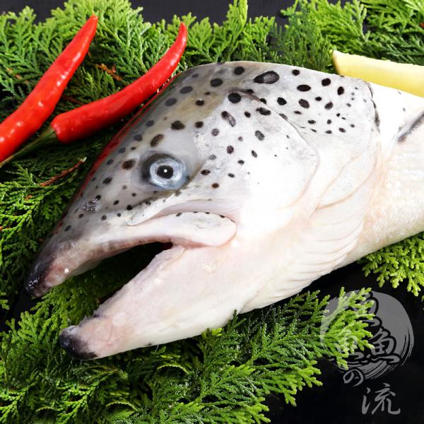 【鮮之流】智利半切鮭魚頭 400g/包