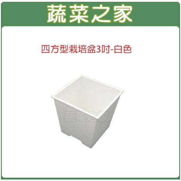 【蔬菜之家005-D110-WI】四方型栽培盆3吋-白色(厚)