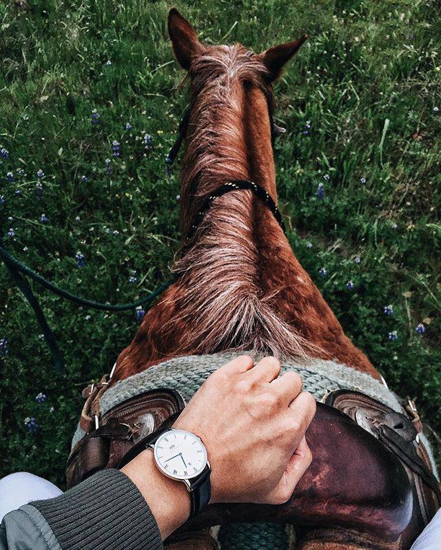 【Daniel Wellington】DW手錶DAPPER READING 38MM(免費贈送另一組表帶) 7