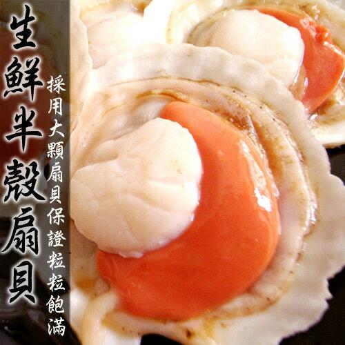 【築地一番鮮】生鮮半殼扇貝500g