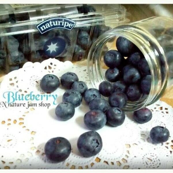 N&N天然手工果醬-藍莓口味50ml(絕無添加防腐劑、人工添加物)