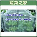 【蔬菜之家005-A13】四箱連通箱防蟲網(型號D21)