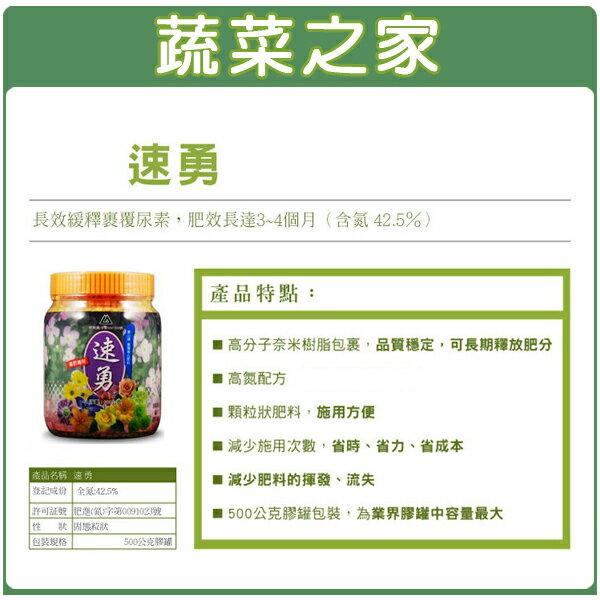【蔬菜之家002-B11】速勇500克(長效緩釋裹覆尿素.可用於多肉植物)