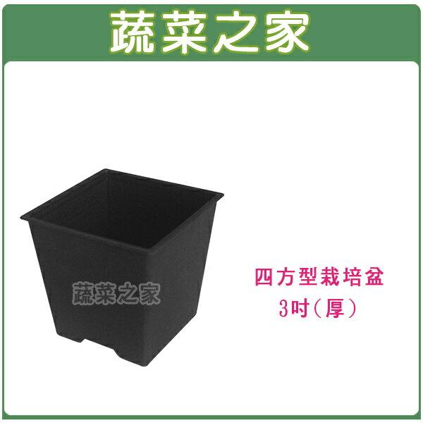 【蔬菜之家005-D110-BL】四方型栽培盆3吋-黑色(厚)