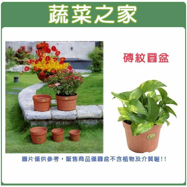 【蔬菜之家005-D42】7號磚紋圓盆16.0D*12.5H(CM)