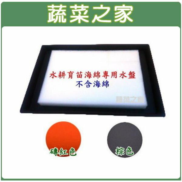【蔬菜之家015-E20】水耕育苗海綿.泡綿專用水盤(水耕海棉.泡棉)-磚紅色
