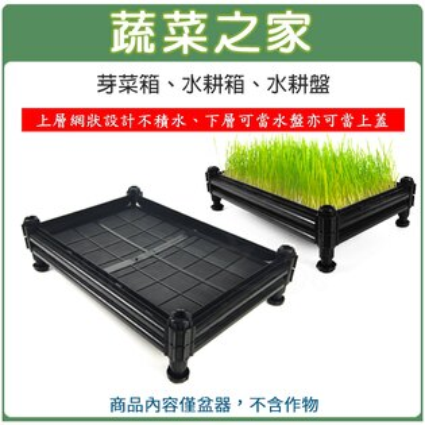 【蔬菜之家005-A31】A01芽菜箱、水耕箱、家庭式多用途芽菜培育箱