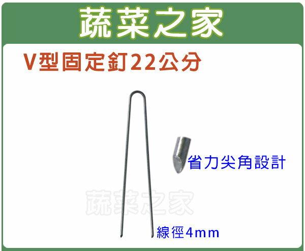 【蔬菜之家012-A21】V型固定釘22公分(線徑4mm.V型釘.鐵線釘)