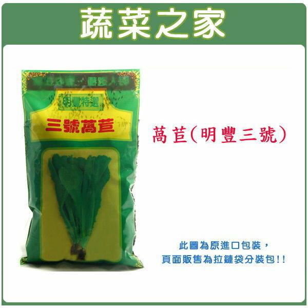【蔬菜之家】A17.萵苣種子 (明豐3號)7500顆