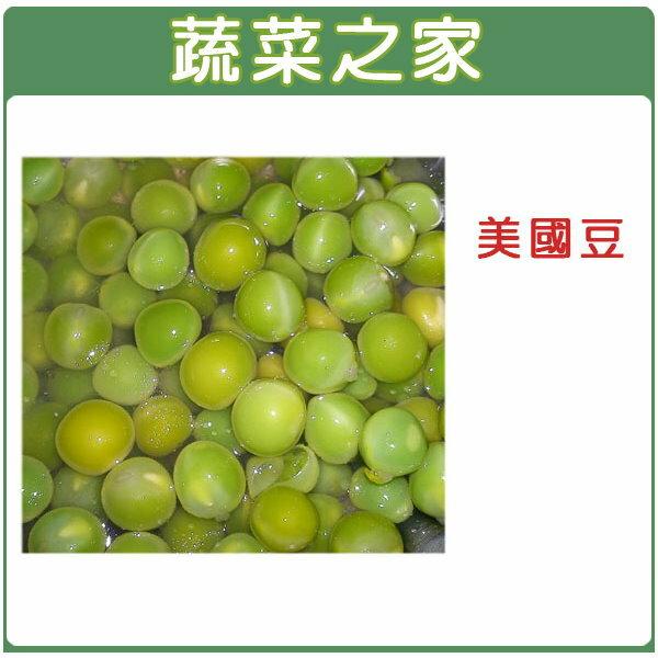 【蔬菜之家】E12.美國豆種子(熟豆、青豆仁)50顆