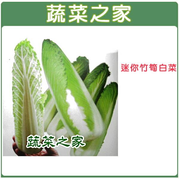 【蔬菜之家】B12.迷你竹筍白菜種子 80顆