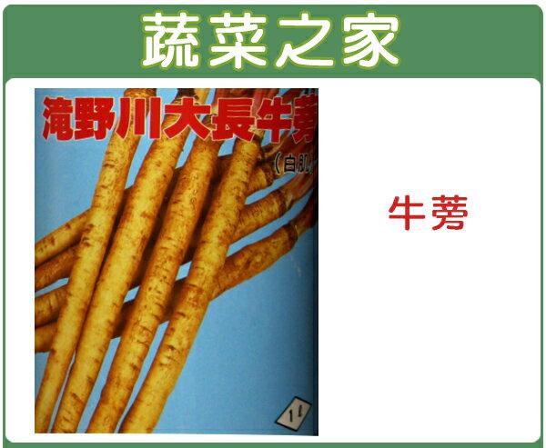 【蔬菜之家】C10.牛蒡種子50顆
