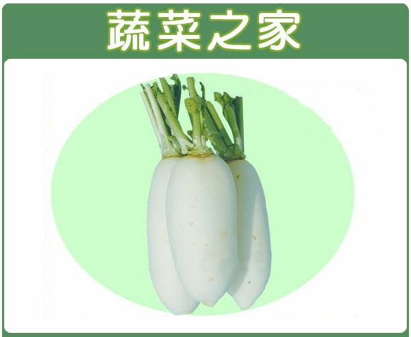 【蔬菜之家】C11.梅花白蘿蔔種子500顆