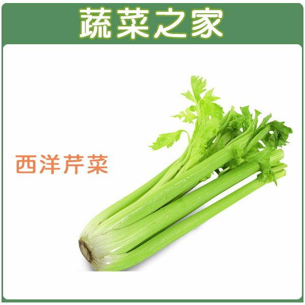 【蔬菜之家】F06.西洋芹菜(美國芹)種子 2000顆