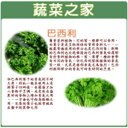 【蔬菜之家】F11.巴西利300顆種子 (西洋香菜、歐芹)