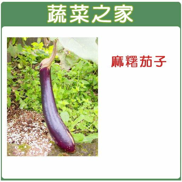 【蔬菜之家】G18.麻糬茄子種子30顆(長型紫紅色 果皮)