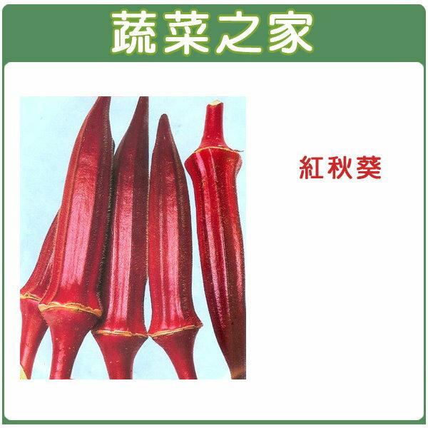 【蔬菜之家】G35.紅秋葵種子30顆