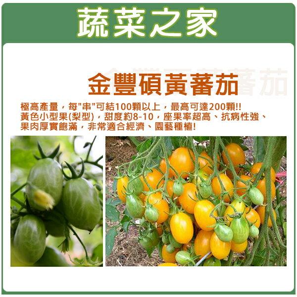 【蔬菜之家】G43金豐碩黃蕃茄3顆
