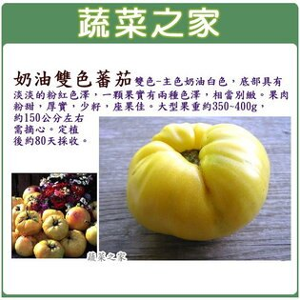 【蔬菜之家】G70奶油雙色蕃茄種子5顆