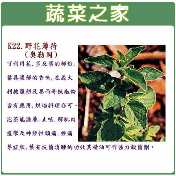 【蔬菜之家】K22.野花薄荷種子(奧勒岡)200顆