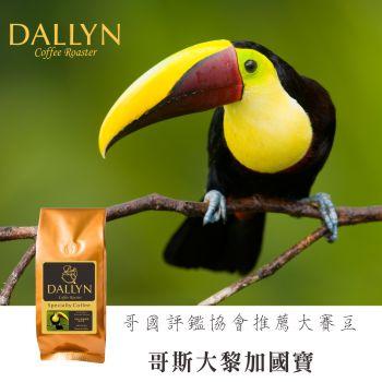 【DALLYN 】哥斯大黎加國寶Costa Rica Tournon Tarrazu  (250g/包)    世界嚴選莊園咖啡豆 1