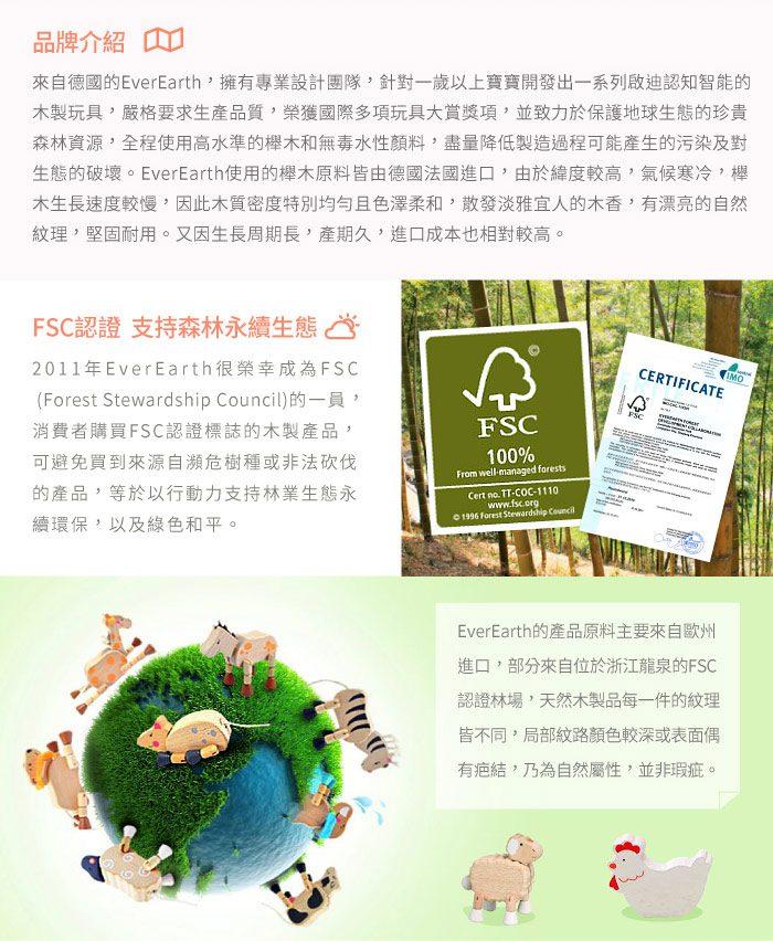 德國EverEarth環保成長木玩-豪華木匠工具檯 4