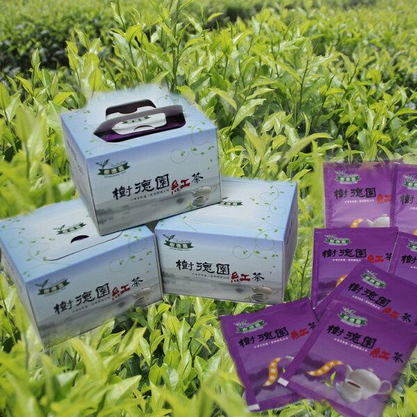 樹德園紅茶台茶18號紅玉袋茶10入自然農法栽種 手採功夫紅茶 日月潭紅茶