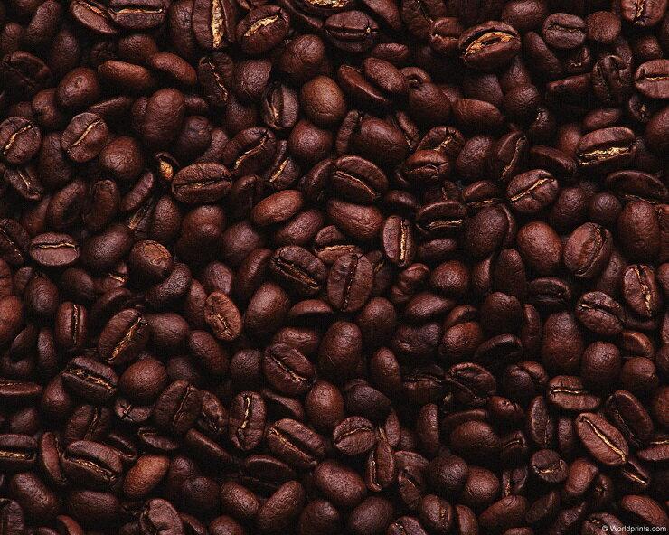 【二咖啡手感烘培館】晨曦舞山嵐_招牌綜合 耳掛式咖啡 一包十杯份 2